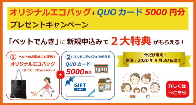 オリジナルエコバッグ+QUOカード5,000円分プレゼントキャンペーン開始!
